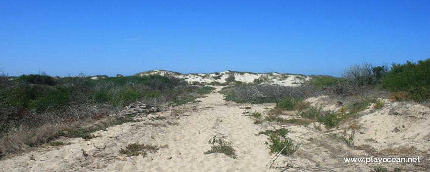 Path to Praia da Ponte da Vagueira Beach