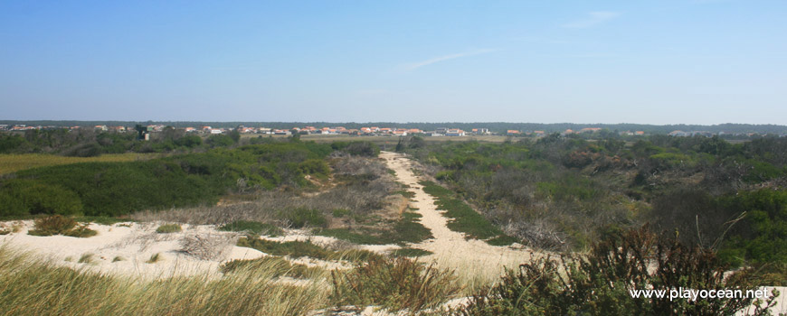 Exit of Praia da Ponte da Vagueira Beach