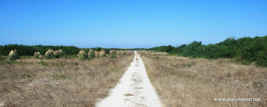 Access to Praia da Vagueira (North) Beach