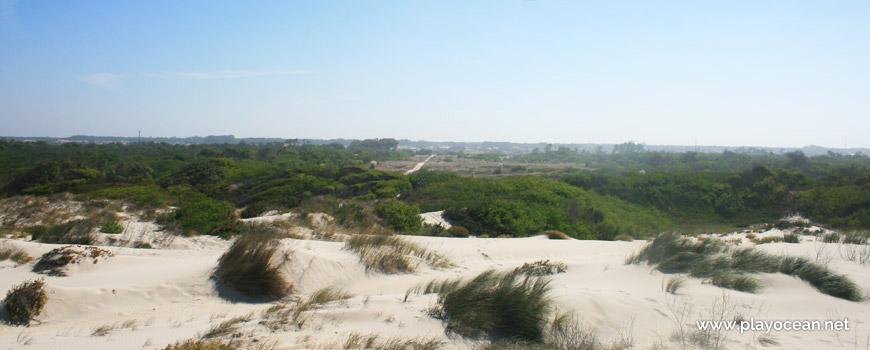Saída da Praia da Vagueira (Norte)