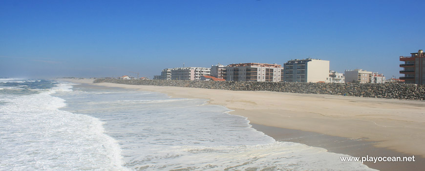 Houses of Praia da Vagueira