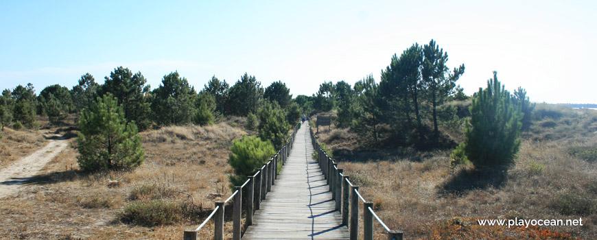 Access to Praia do Cabedelo Beach