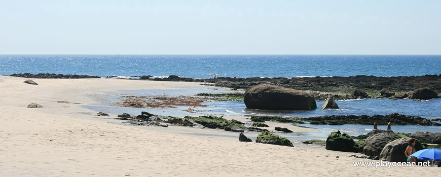 Whale at Praia de Carreço Beach