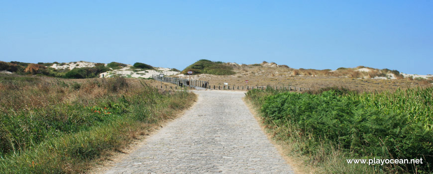 Road to Praia da Ínsua Beach