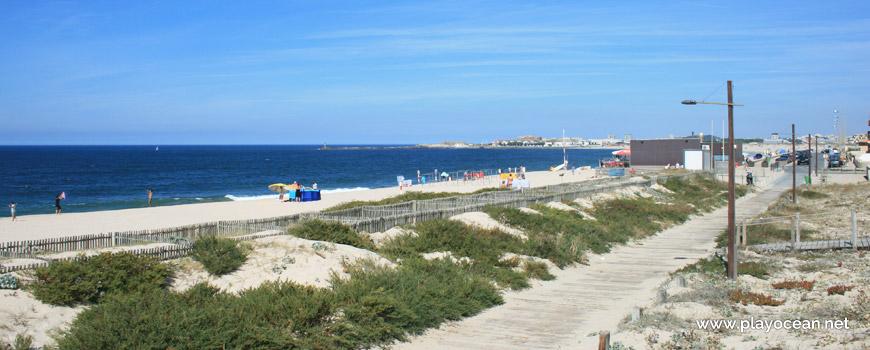 Protected dunes, Praia de Árvore Beach