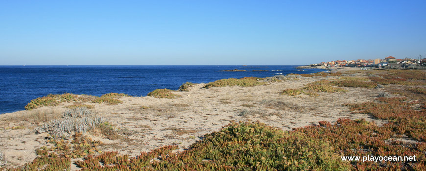 Dunas na Praia de Moreiró (Norte)
