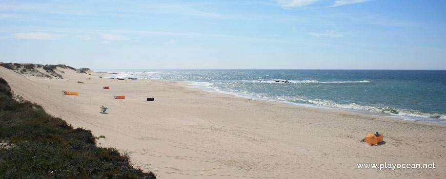 South of Praia do Pinhal dos Eléctricos Beach