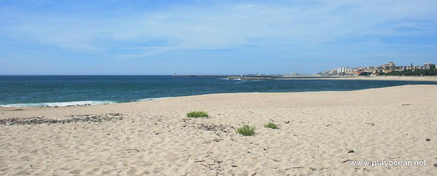 Praia do Cabedelo do Douro Beach
