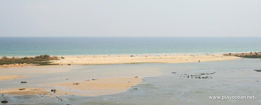 Restinga na Praia de Cacela Velha