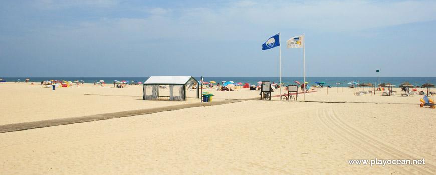 Estandartes na Praia da Lota