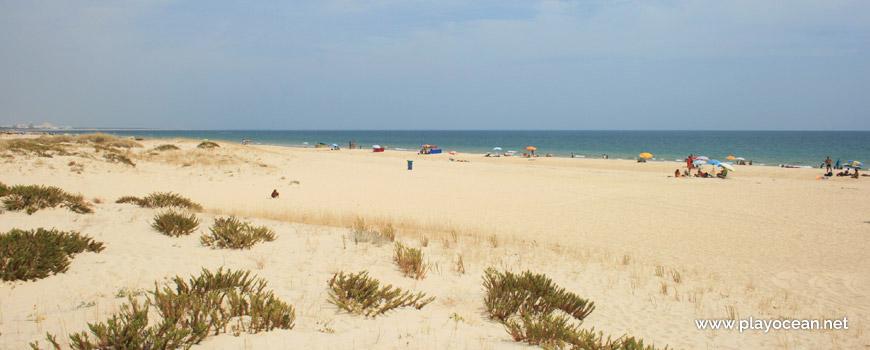 Praia da Lota Beach