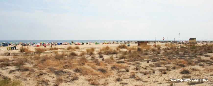 Praia da Manta Rota, a partir das dunas